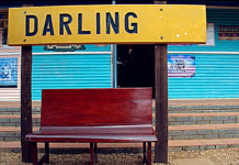 The Darling Collection