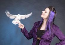 Fairy lee cohen