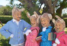 Peter Rabbit Mia Dippenaar, Flopsy Mila Barton, Mopsy Jenna Koller, Cotton Tail Sarah Holwill