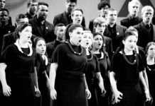 Stellenbosch University Choir Shadows and Wings
