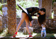 Dancers Love Dogs