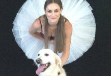 Dancers Love Dogs Artscape