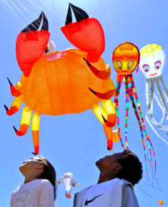 Cape Town International Kite Festival 2018