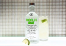Absolut Lime Vodka Cocktail Recipes,