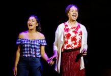 'Aunty Merle The Musical'