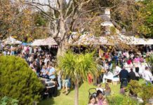 secret garden market cape town