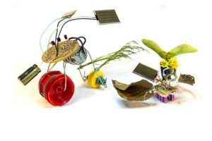 Free Sunshine - Mini robots powered by the sun. A project by Miranda Moss, Thulile Gamedze and Oliver Walkhoff