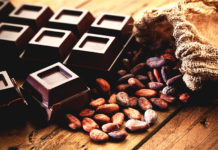 Seven Fun Facts About Chocolate!