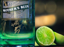 Mother's Ruin gin Ginapalooza Gin & Music Festival at 012central and African Beer Emporium Pretoria