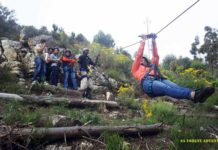 cape town ziplines sa forestadventures book tickets