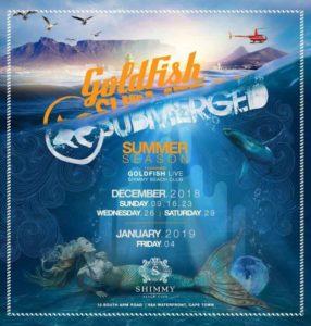 Shimmy Beach Club Goldfish Submerged