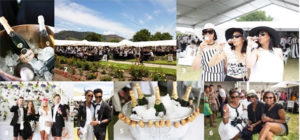 Franschhoek Cap Classique & Champagne Festival Magic of Bubbles