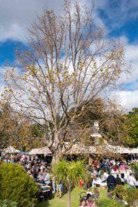 A Secret Garden Market setting in Cape Town