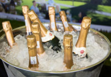 franschhoek cape classique champagne-festival 2018 tickets