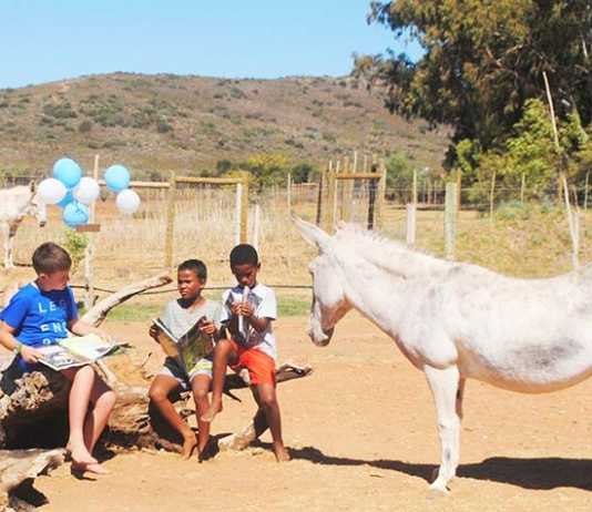The Eseltjiesrus Donkey Sanctuary celebrates a love of books at the 2019 Eseltjiesrus Book Fair in McGregor