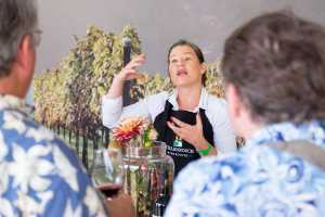 The Stellenbosch Wine Festival 2019 will be at V&A Waterfront North Wharf