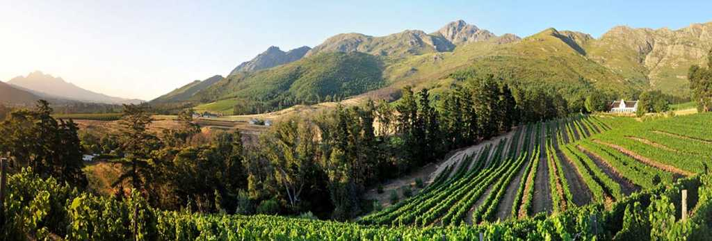 Sample wines from Holden Manz, Black Elephant Vintners, Anthonij Rupert Wyne, La Bri, La Motte, Plaisir de Merle, Franschhoek Cellar and La Couronne at Franschhoek Winter Wines 2019.