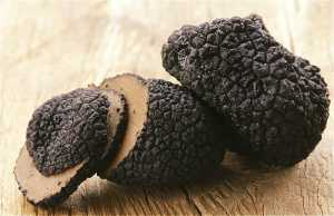 Truffles in Franschhoek