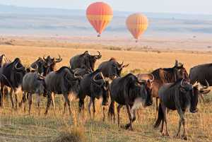 Serengeti hot air balloon safaris